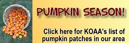 Pumpkin Patches in and around Hartford